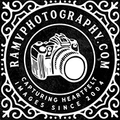 Affordable Wedding Photographers in Metro Detroit